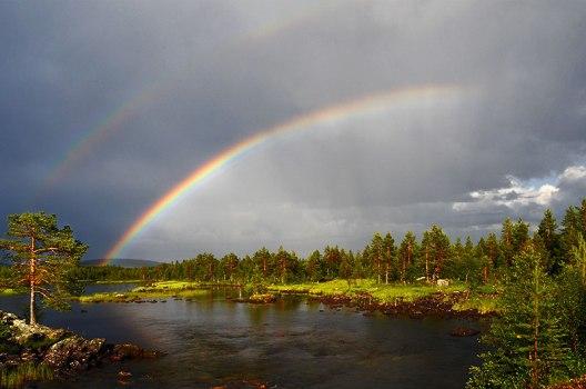 Rainbow_02