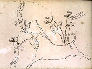 bull_leaping_diagram1