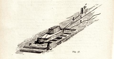 LizzaturaFig38-1