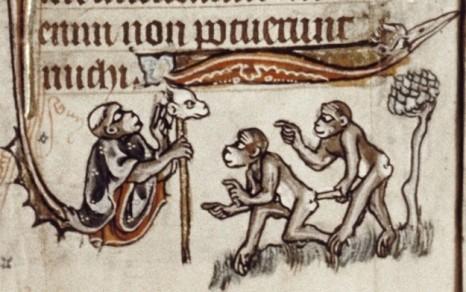 scimmie-sodomite