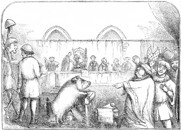 1280px-Trial_of_a_sow_and_pigs_at_Lavegny