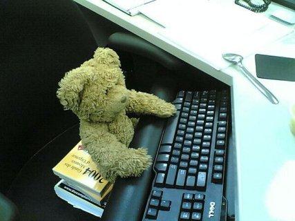 teddy-bear-at-work-day