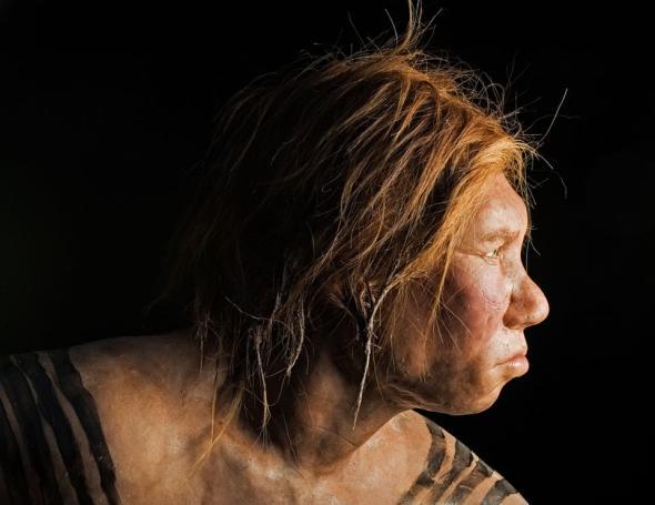 neanderthals-interbreeding-humans_19941_990x742.adapt.590.1