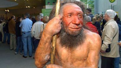 neanderthal992
