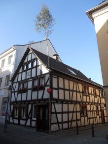 1024px-Fachwerkhaus_mit_Maibaum,_Königswinter