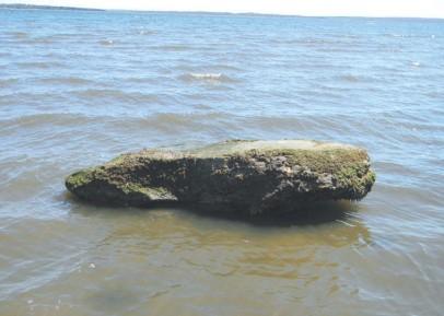 Narragansett Bay Runestone 5